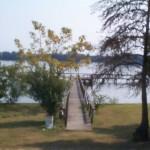 Lakeshore1