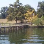 Lakeshore4