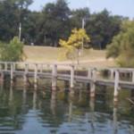 Lakeshore5